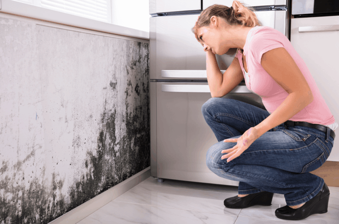 prevent-mold-growth-american-air-candler-nc